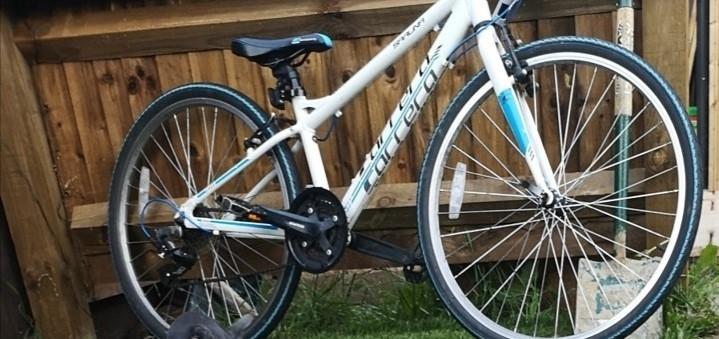 stolen_bicycle_374214721.jpg